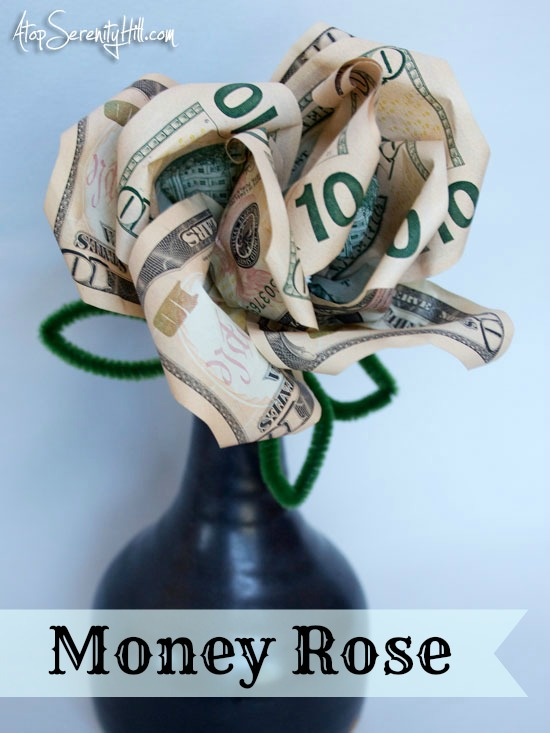 moneyrose