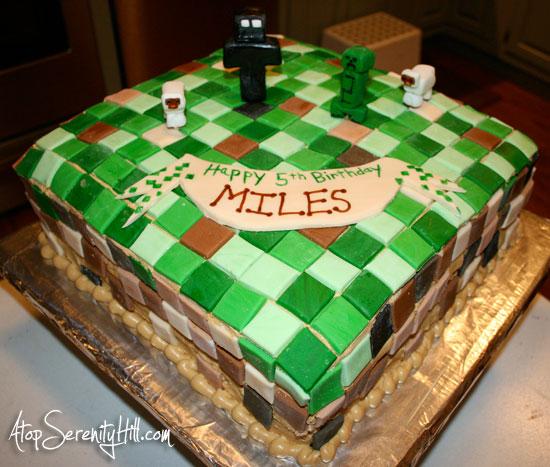 Minecraft Birthday Cake • AtopSerenityHill.com