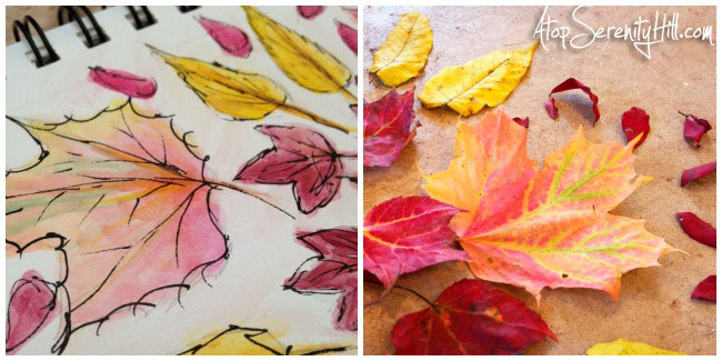 Fall leaves mandala using real leaves I collected on my walks then recreated in watercolor and ink • AtopSerenityHill.com #photography #fall #mandala