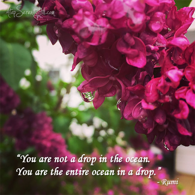 Quote for the week together with my photography from AtopSerenityHill.com #quote #inspiration #photography