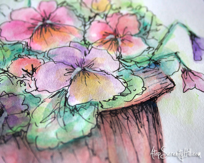 Watercolor and black marker in sketchbook: pansies • AtopSerenityHill.com #doodling #watercolor #flowers